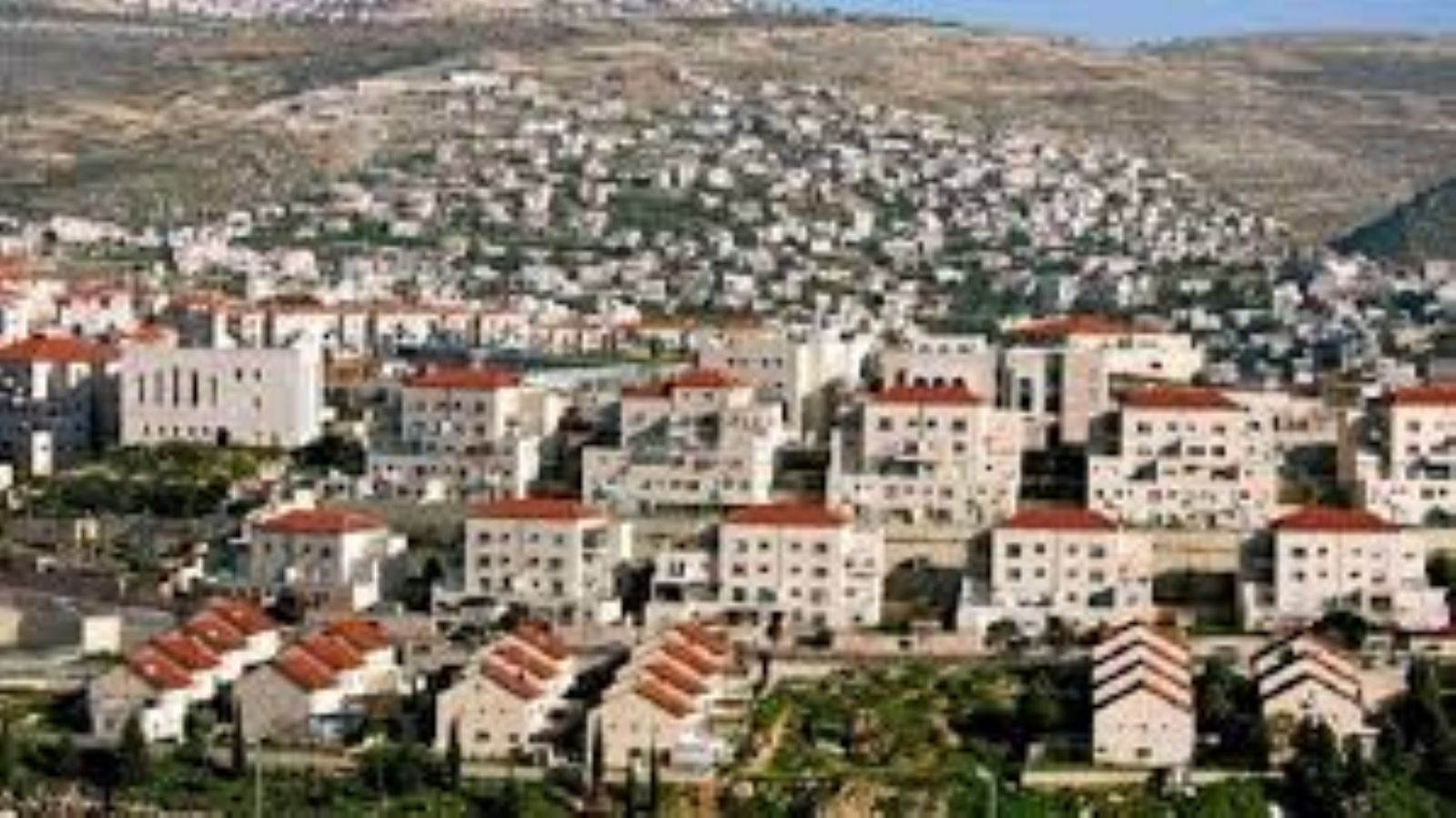 Expert warns that Arab countries have adopted Israeli settlement claims